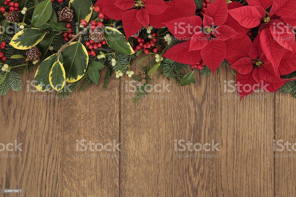 Winter Floral Border stock photo