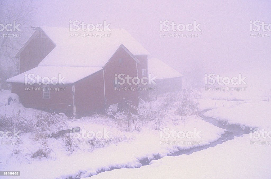 Winter Fog royaltyfri bildbanksbilder