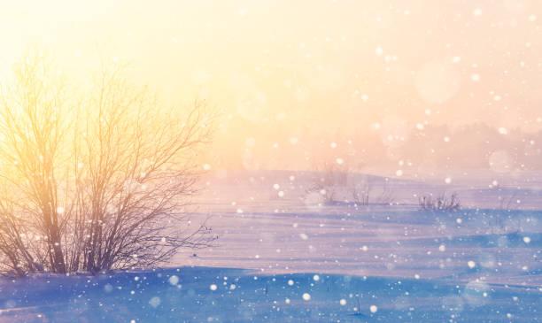 neblig winterlandschaft. - schneeflocke sonnenaufgang stock-fotos und bilder