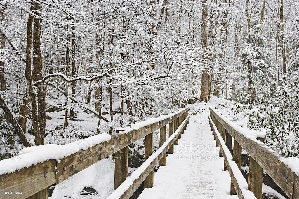 Winter footbridge royalty-free stock photo
