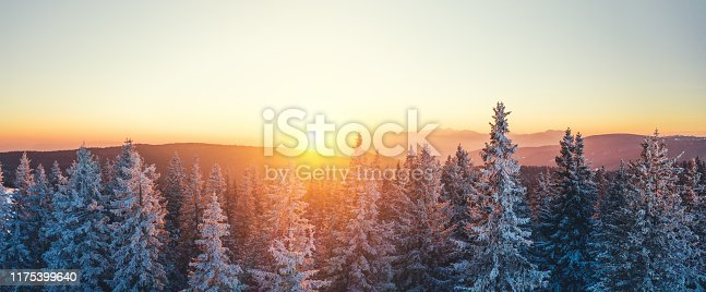 Snowcapped winter forest at sunset. View from above.