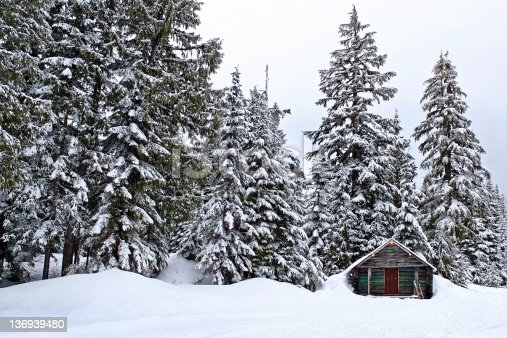wilderness log cabin in winter forest