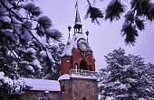 Winter forest castle