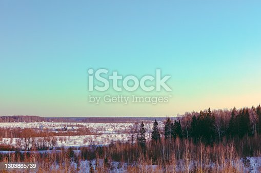 winter forest landscape - blue sky
