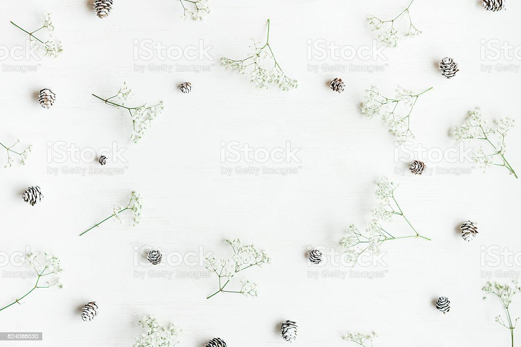 Winter frame made of pine cones and gypsophila flowers stock photo