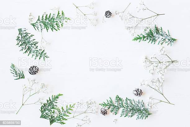 Winter frame made of pine cones thuja branches gypsophila flowers picture id625859750?b=1&k=6&m=625859750&s=612x612&h=qrzulgl5r hmur8lzvfqhe2qxzurv5ms xfmskcpuru=