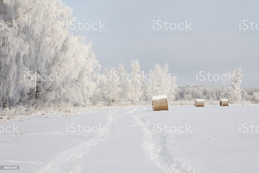 Winter frost landscape royalty-free stock photo
