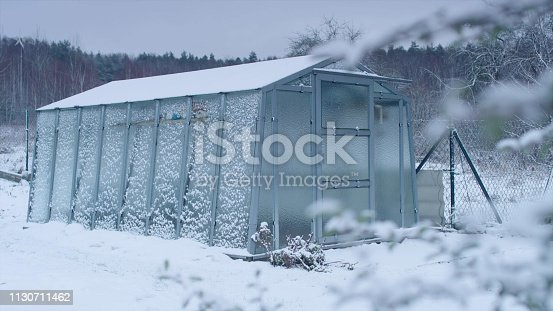 Snow covered garden. Peaceful winter landscape