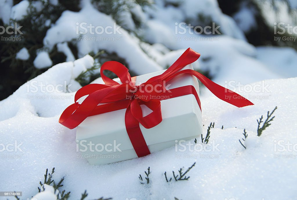 Winter Gift royalty-free stock photo