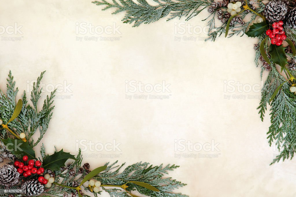 Winter Greenery Border stock photo