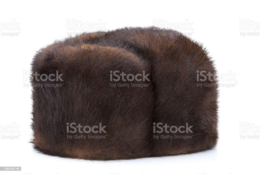Winter hat Mink stock photo