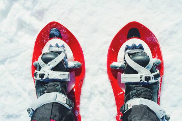 hiver randonnée en montagne avec un sac à dos et tentes. - raquette photos et images de collection