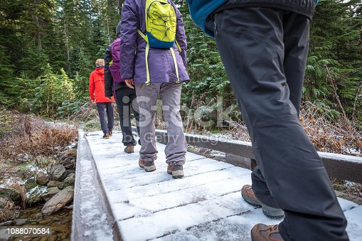 903015102 istock photo Winter Hiking Group Crossing Snow Covered Bridge in Forest 1088070584