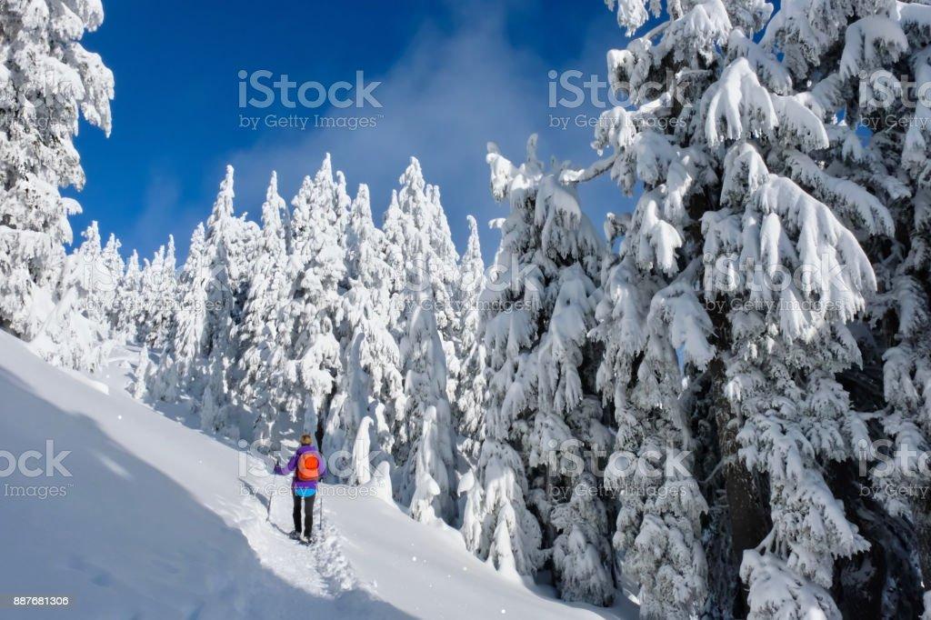 Winterwandern, Schneeschuhwandern im Schnee bedeckt Wald. – Foto
