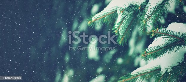 istock Winter Holiday Evergreen Christmas Tree Pine Branches Covered With Snow and Falling Snowflakes 1189236694