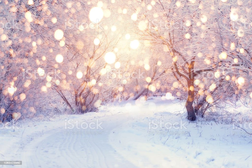 Winter Holiday Illumination Stock Photo Download Image Now Istock