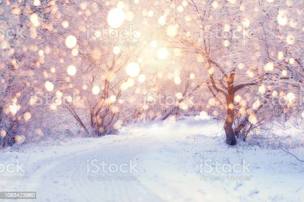Photo of Winter holiday illumination