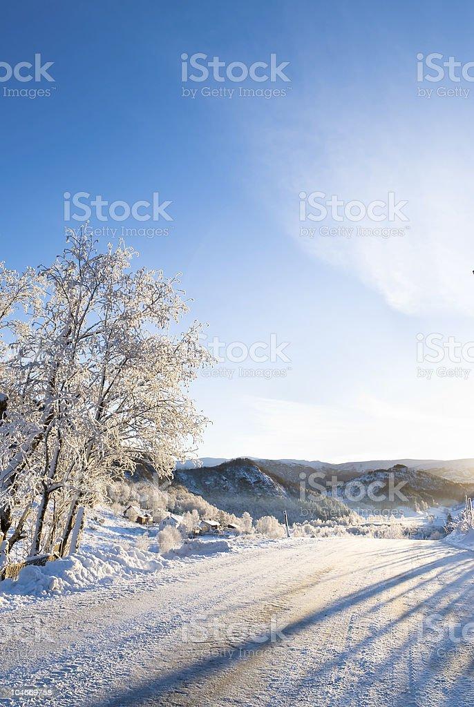 Winter holiday! royalty-free stock photo