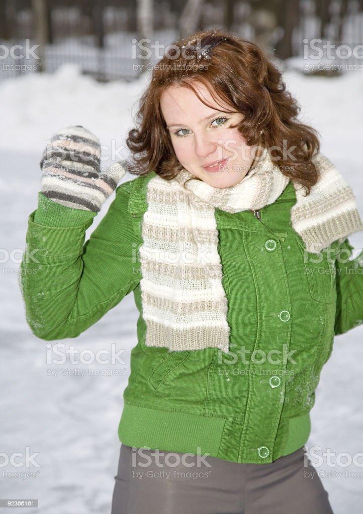 winter holidays royalty-free stock photo