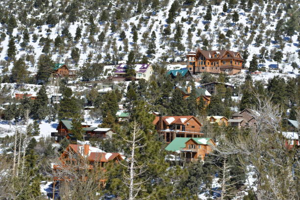 Winterhäuser auf einer Bergseite am Mount Charleston in Nevada – Foto