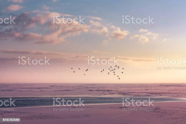 Winter horizon at a frozen lake picture id849283586?b=1&k=6&m=849283586&s=612x612&h=ehm4fqflm3vvhuxgokpbeq3rzz dvv73usfowuplxnc=