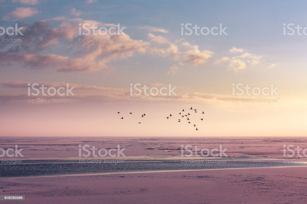 Winter Horizon at a frozen lake stock photo