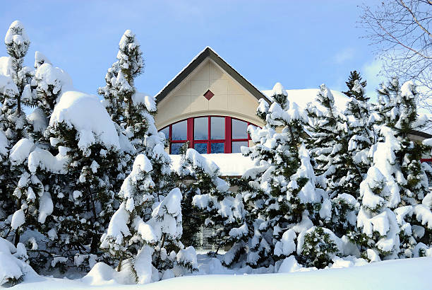 Winter house behind fir trees A House after winter storm. Big snowbanks and snow covered firs in front of the house. russian dacha stock pictures, royalty-free photos & images