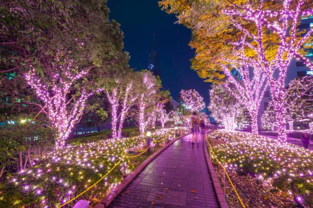 winter-beleuchtung in tokyo in shinjuku bezirk - japanische lampen stock-fotos und bilder