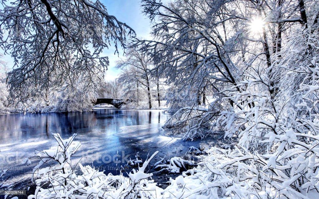 Winter in Boston's Franklin Park stock photo