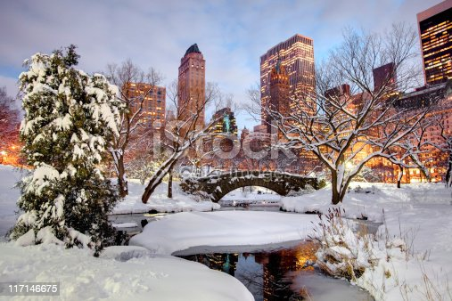 istock Winter in Central Park, New York City 117146675