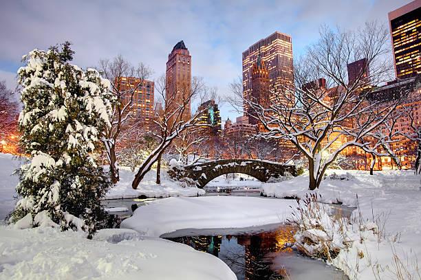 zima w central park, nowy jork - central park manhattan zdjęcia i obrazy z banku zdjęć