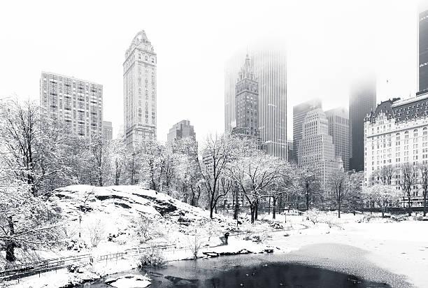 zima w park centralny, nowy jork - central park manhattan zdjęcia i obrazy z banku zdjęć