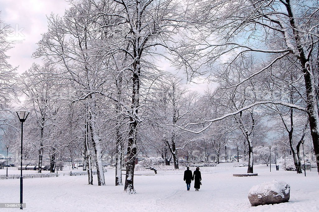 Winter in City Park royalty-free stock photo