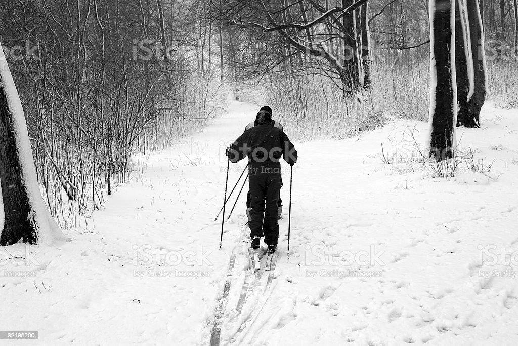 winter in denmark 03 royalty-free stock photo