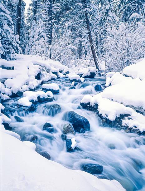 winter in emerald bay state park am lake tahoe, california - lake tahoe winter stock-fotos und bilder