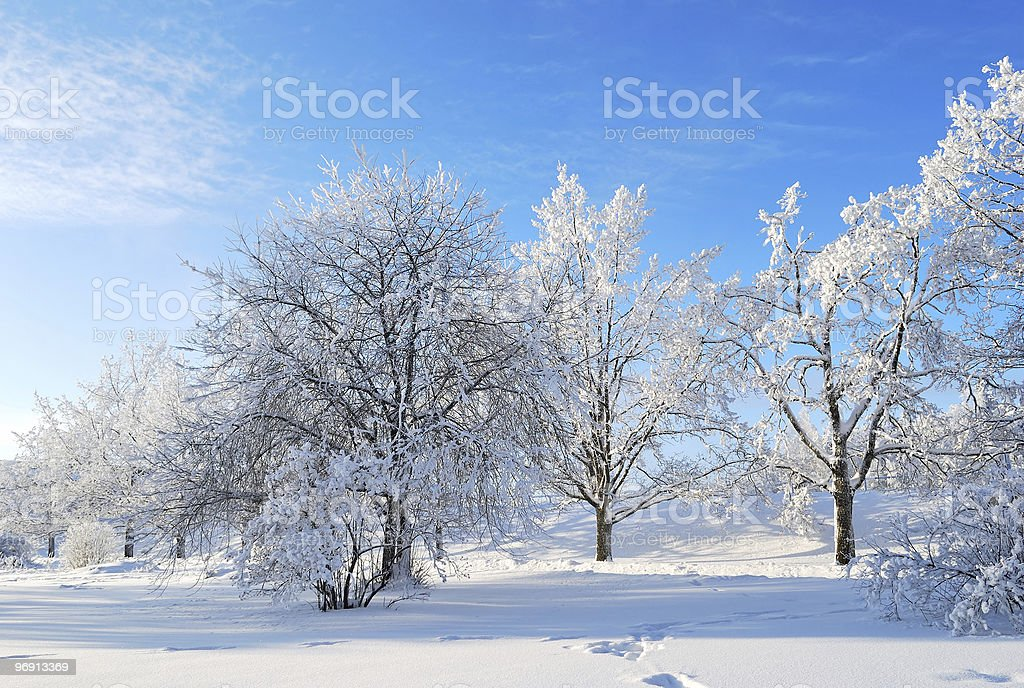 Winter in Finland royalty-free stock photo