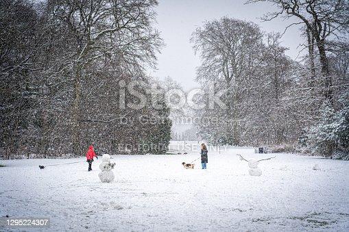istock Winter in Frederiksberg Gardens in Copenhagen 1295224307