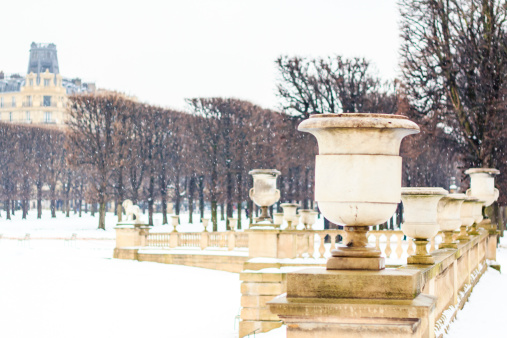 Winter In Luxembourg Garden Paris Stock Photo - Download Image Now