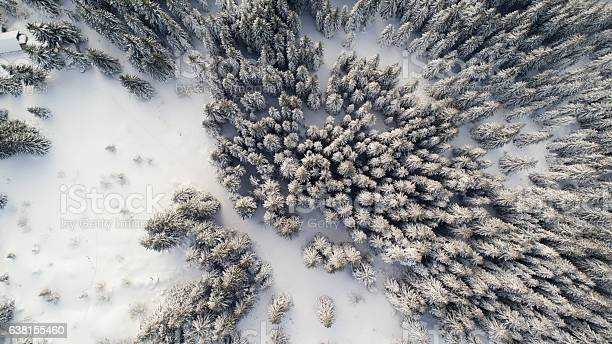 Photo of Winter in mountain