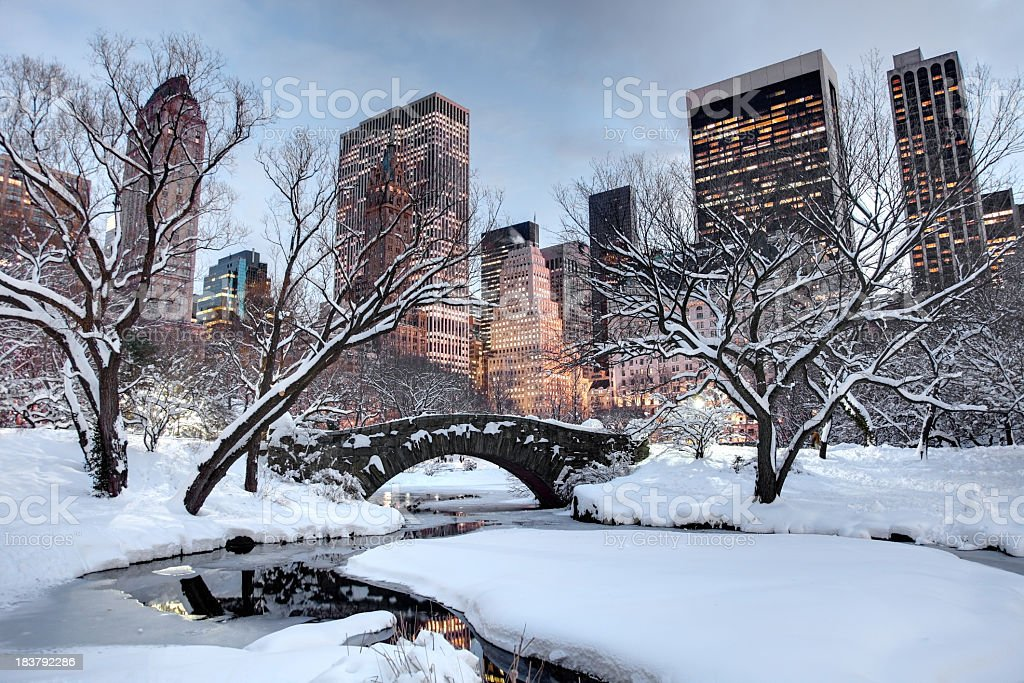 Winter in New York City royalty-free stock photo