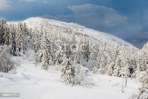 istock Winter in Norway 536311711