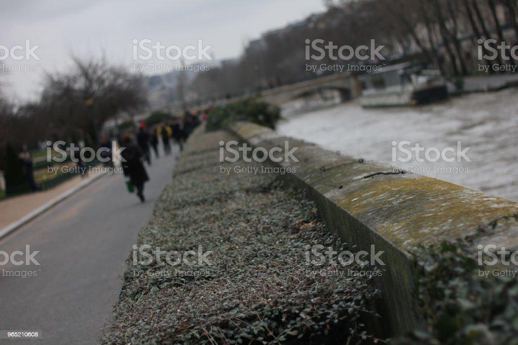 Winter in Paris zbiór zdjęć royalty-free