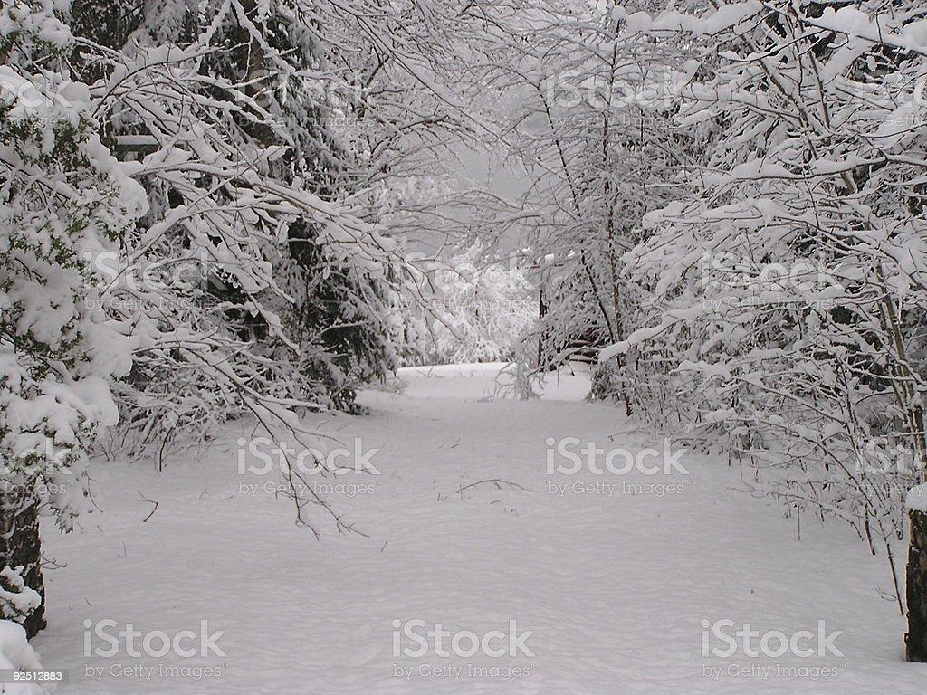 Winter in Quebec - stock photo