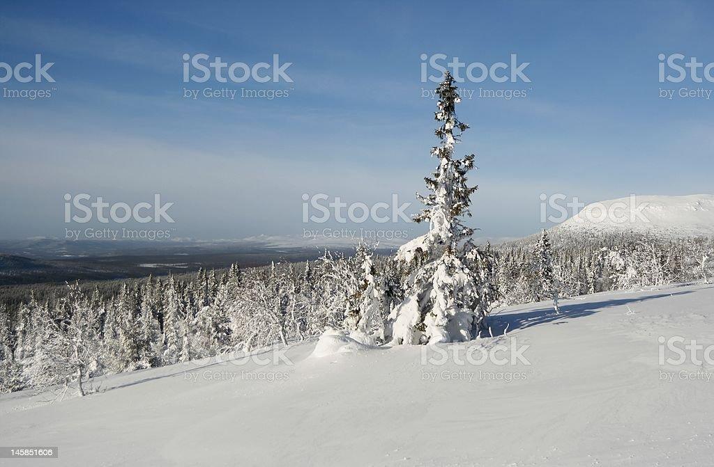 Winter in Scandinavia stock photo