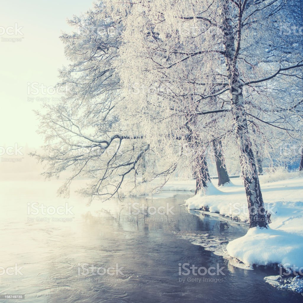 Winter in Sweden royalty-free stock photo