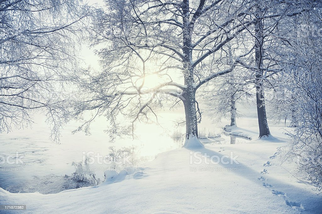 Winter in Sweden stock photo