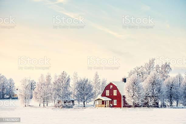 Winter in sweden picture id175226201?b=1&k=6&m=175226201&s=612x612&h=ttujum1a 3p7gzh837u3uqxogwrludugot heigsfb8=