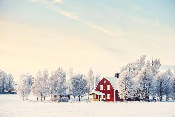 zima w szwecji - szwecja zdjęcia i obrazy z banku zdjęć
