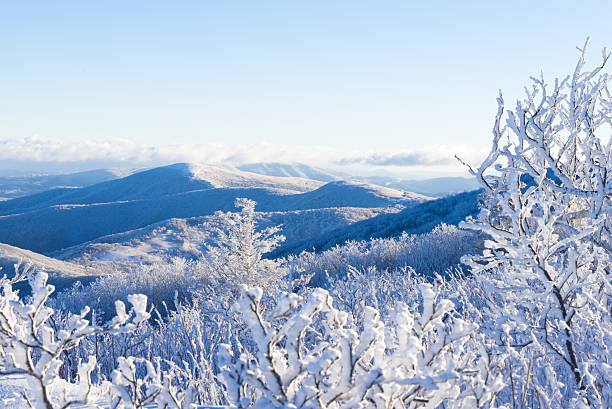 Winter In The Blue Ridge Mountains Hiking along the Appalachian Trail in the winter snow-covered landscape at the Roan Highlands appalachia stock pictures, royalty-free photos & images
