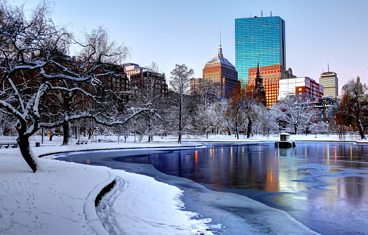 Winter In The Boston Public Garden Stock Photo - Download Image Now